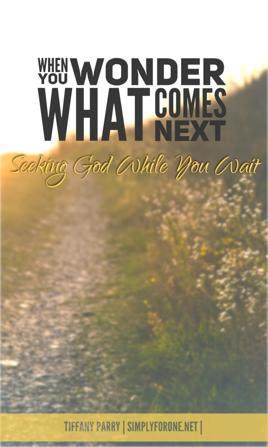 Seeking and waiting are anything but simple. While we have no idea what comes next, God knows. If we WILL seek, we WILL find. Read more @ www.simplyforone.net http://wp.me/p2v8DX-Lc