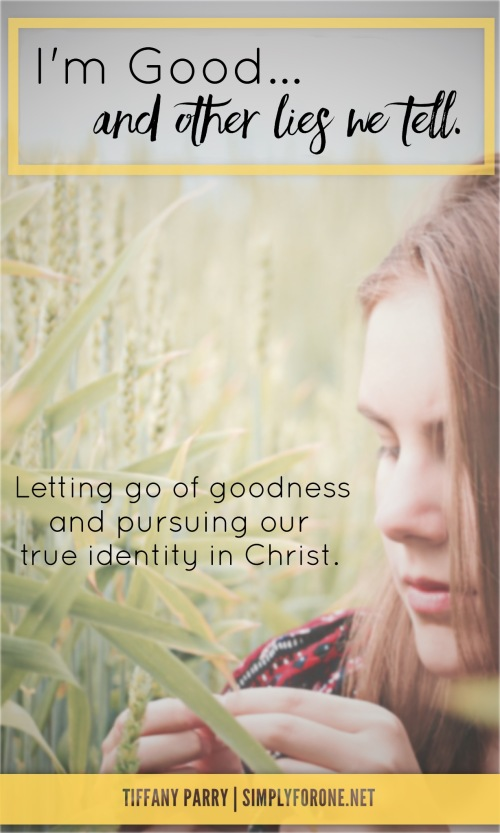 We need to stop focusing on what WE THINK we SHOULD be, and embrace WHO WE ARE in Christ. | Faith | Encouragement | Biblical Truth | Scripture | Identity in Christ |